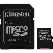 Kingston SDCS/256GB 256GB фото